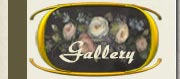 Mary Jo Leisure Art Gallery - Decorative Art, Giclees, and Landscapes